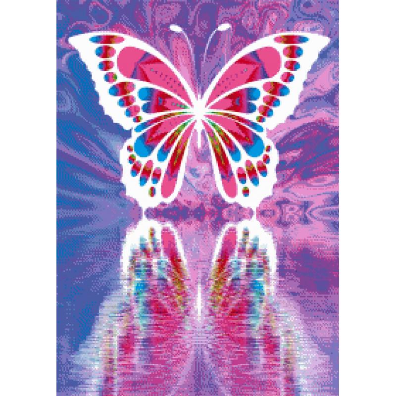 Butterfly 1 - 50 x 70 cm