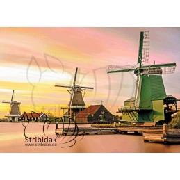 Windmills - 100 x 70 cm