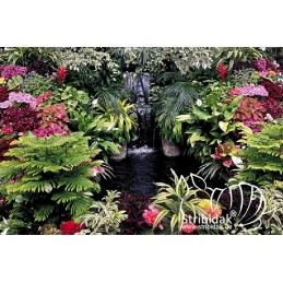 Garden 150 x 100 cm