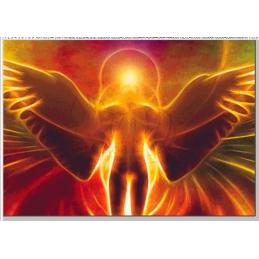 Angel - 100 x 70 cm