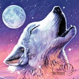 Wolf - 50 x 50 cm