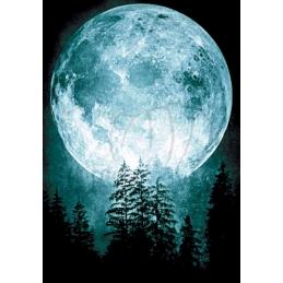 Moon - 70 x 100 cm