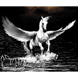 Pegasus - 430M x 360R