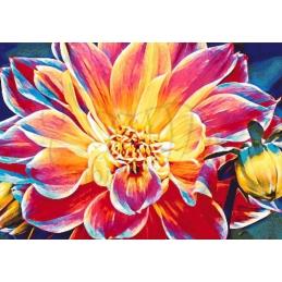 Dahlia - 100 x 70 cm