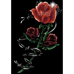 Rose - 70 x 100 cm