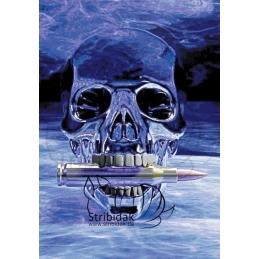 Skull - 70 x 100 cm